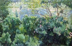 Розовый куст после дождя 1904 г.